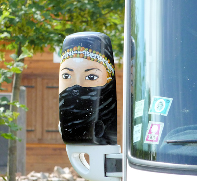 painted mh wing mirror